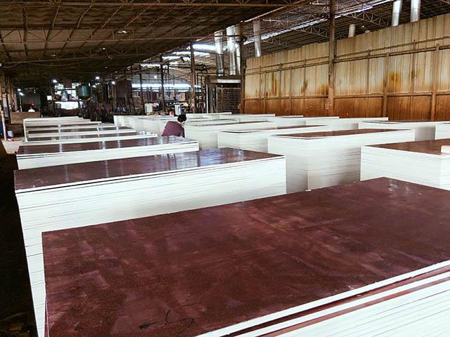 广西建筑模板厂家教你选用优质建筑模板